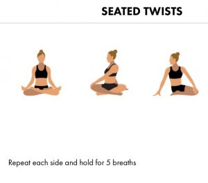 seated-twists