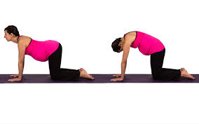 seven prenatal yoga poses to prevent and relieve sciatica