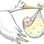 stork-baby_logo-copy