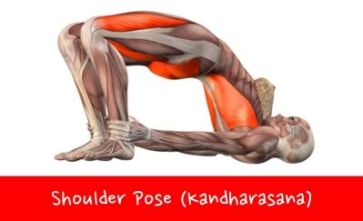 yoga or opioids for back pain the doctor says yoga